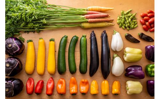 ワクワクする「うるおい春夏秋冬(農家)」さんの季節の旬野菜