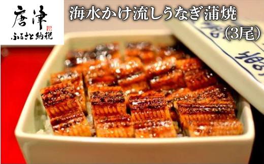 海水かけ流しうなぎ蒲焼(3尾) ウナギ 鰻