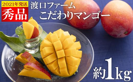 【2021年発送】渡口ファームのこだわりマンゴー約1kg〈秀品〉