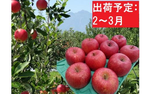 [№5228-0255]2~3月 贈答用 EMサンふじ約3kg 糖度13度以上【弘前市産・青森りんご】