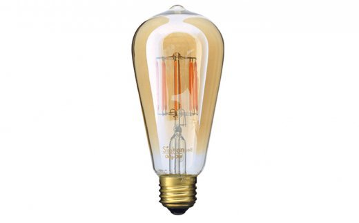 [№5229-0043]アンティーク型フィラメントLED電球Siphonサイフォン「Edisonエジソン」LDF30A