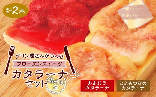 福岡県産カタラーナセット 2種 あまおう とよみつひめ 詰め合わせ