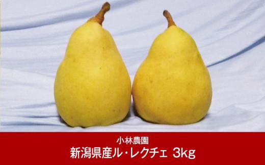 【015P042】[小林農園]新潟フルーツ 新潟県産 洋梨 ル・レクチェ 3kg