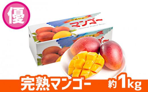 【2021年発送】ヤマト農園 完熟マンゴー約1kg(優品)