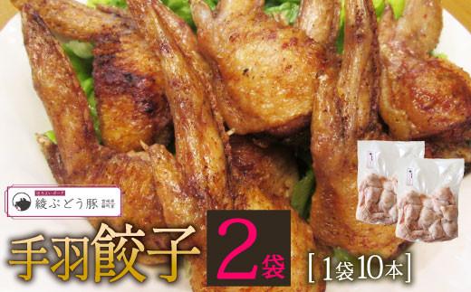 36-138_【綾ぶどう豚使用】手羽餃子20本
