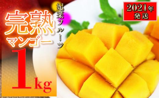 【2021年発送】糸満産!妃菜フルーツ完熟マンゴー1kg(ご家庭用)