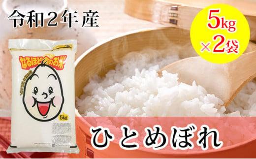 秋田県産ひとめぼれ10kg(5kg×2袋・精米)(訳あり 訳アリ コロナ支援 緊急支援 応援)