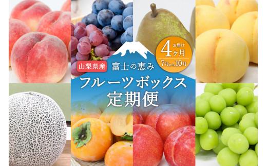 【4ヶ月お届け!】山梨産フルーツ詰め合わせ定期便(7~10月)