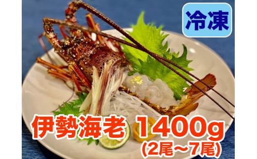 【職人吉岡】冷凍伊勢海老1400g!!(2尾から7尾)