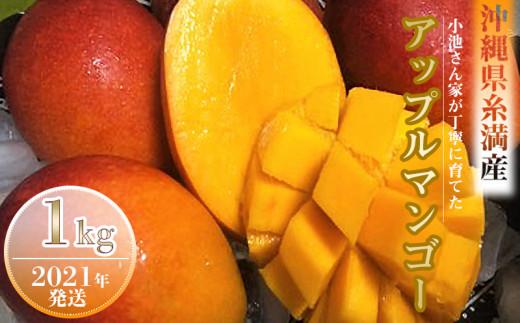 【2021年発送】小池さん家が丁寧に育てたアップルマンゴー1kg