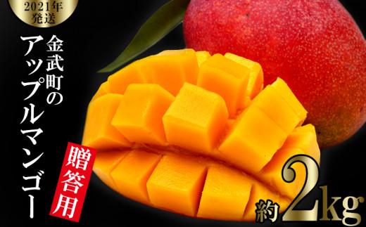 【2021年発送】金武町のアップルマンゴー◆贈答用◆約2kg(4玉~6玉)