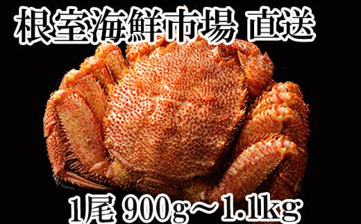 B-11016 ボイル毛がに900g~1.1kg×1尾