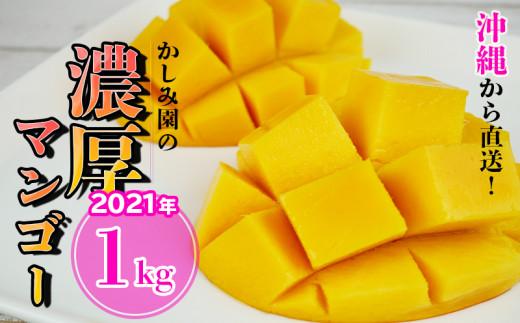 【2021年発送】沖縄から直送!かしみ園の「濃厚マンゴー」1kg
