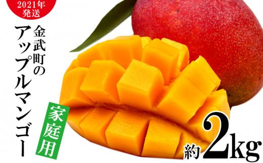 【2021年発送】農家さん直送!アップルマンゴー約2kg 家庭用
