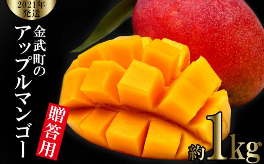 【2021年発送】金武町のアップルマンゴー◆贈答用◆約1kg(2~3玉)