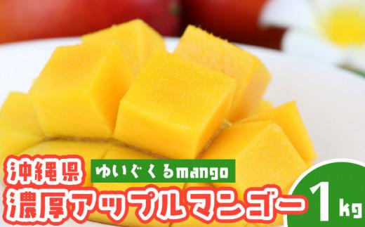 【2021年発送】沖縄県糸満産の「濃厚アップルマンゴー」1kg