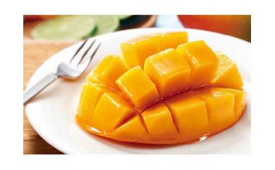 【2021年発送】完熟マンゴー2.0kg(4~5個)☆南国ヨロン島より【先行予約】