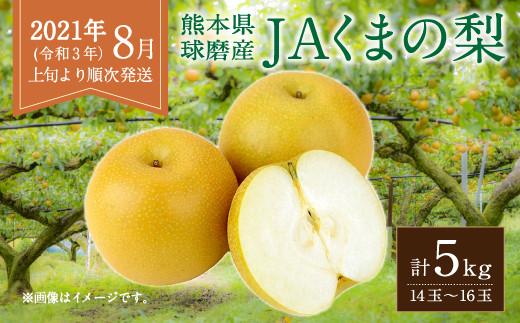 【2021年8月~9月発送】JAくまの梨 5kg(14~16玉)×1箱