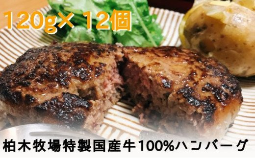 [№5862-1185]「ジュワッと肉汁まで美味い!」柏木牧場特製 国産牛100%ハンバーグ(120g×12個)