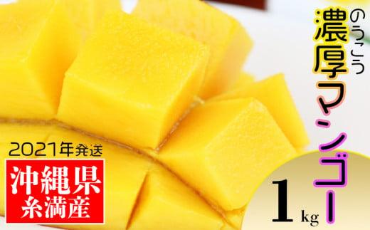 【2021年発送】糸満産!「濃厚沖縄アップルマンゴー」1kg
