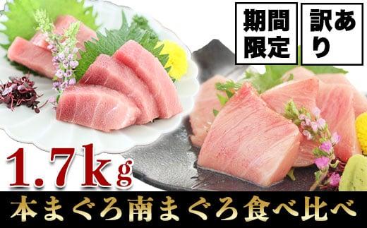a16-050 訳あり マグロ 本鮪 南鮪 中トロ 食べ比べ 約1.7kg
