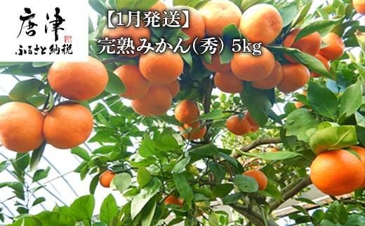 【1月発送】完熟みかん(秀) 5kg