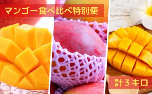 贅沢マンゴー食べ比べ特別便 計3キロ【2021年7月発送】