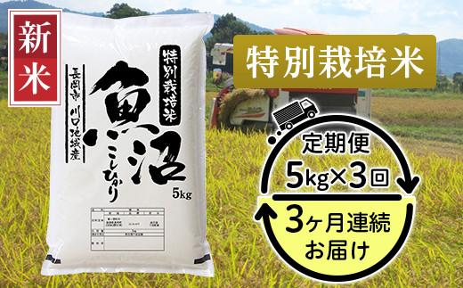 94-K53【3ヶ月連続お届け】特別栽培米 新潟県魚沼産コシヒカリ(長岡川口地域)5kg