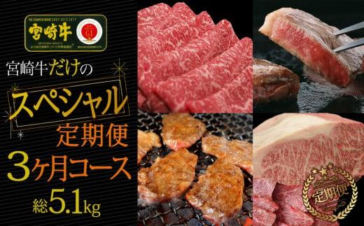 <宮崎牛>厳選スペシャル肉定期便 3ヵ月コース【F66】