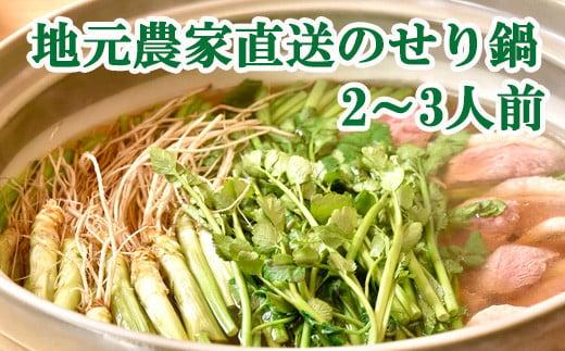 【お届け日時指定】 せり生産量日本一の名取市から 地元農家直送のせりを使った「せり鍋セット」2、3人前