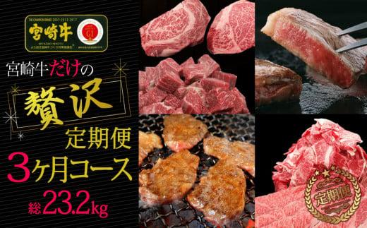 ブランド黒毛和牛<宮崎牛>贅沢肉定期便 3ヵ月コース 合計23.2kg【G15】