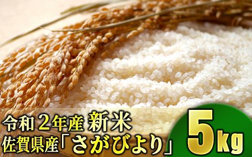 〚令和2年産〛佐賀県産さがびより 5kg