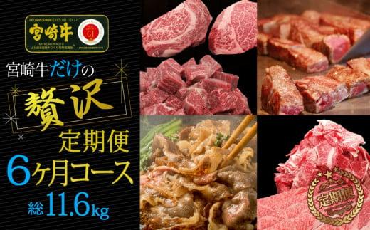 ブランド黒毛和牛<宮崎牛>贅沢肉定期便 6ヵ月コース【G14】