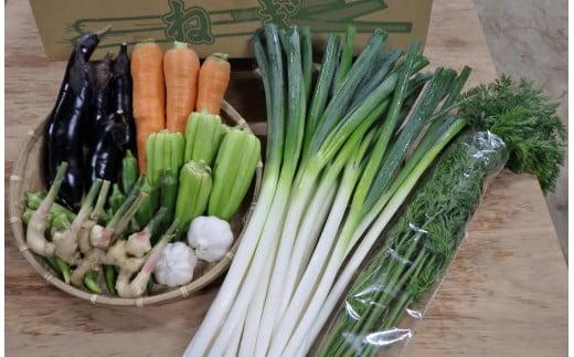 季節の野菜、厳選セット!(5~8種類)