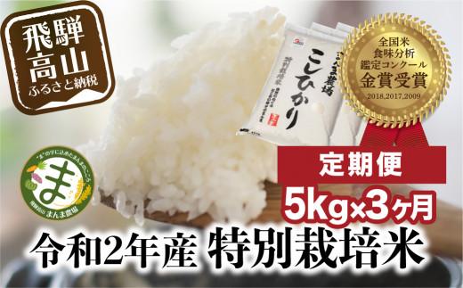 【米 定期便  3ヶ月】飛騨こしひかり 5kg コシヒカリ 特別栽培米 岐阜県産 令和2年 まんま農場 c537