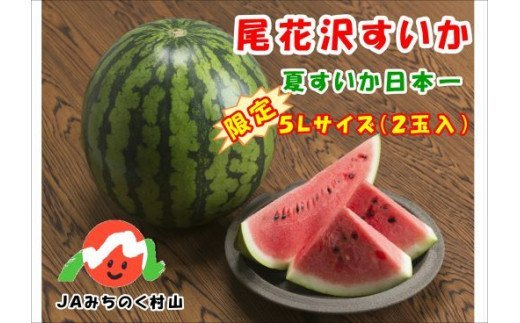 【JA】【限定】尾花沢すいか5Lサイズ(約10~11㎏)×2【令和3年産】(7月下旬~8月下旬頃発送)(N52L)