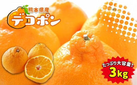 JK11 熊本県産デコポン 約3kg