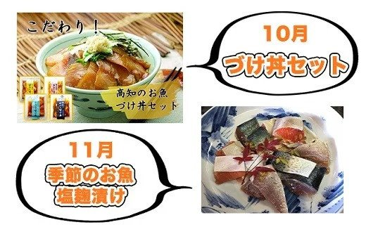 10月:須崎市 こだわり!高知のお魚漬け丼4種×2セット/11月:いの町 季節のお魚塩麹漬け