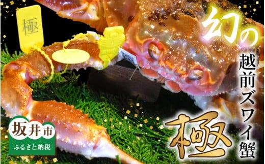 特 上 特 級 越前ズワイ蟹 『極』 1杯 ※活状態で1.5kg以上 《11月から3月 各月3名様限定》 [R-1602]