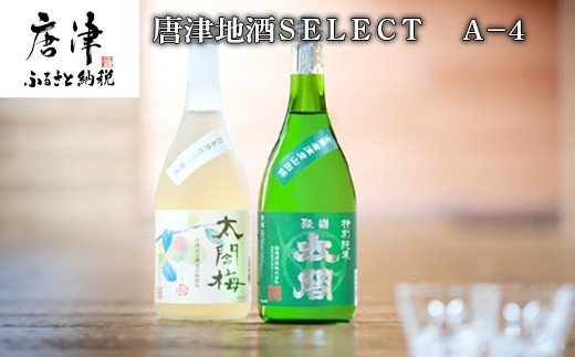 唐津地酒太閤 芳醇な辛口の特別純米酒と口当たり柔らかな梅酒 720ml各1本(計2本) 日本酒・梅酒芳醇セットA-4