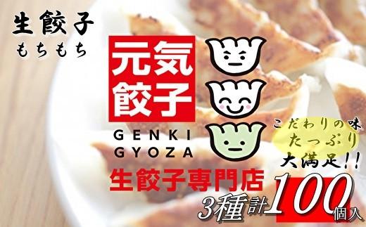 AC-21 元気餃子のこだわり餃子3種セット(100個入り)