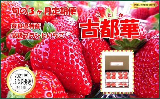 【1・2・3月発送】奈良県特産 高級ブランドいちご「古都華」旬の3ヶ月定期便