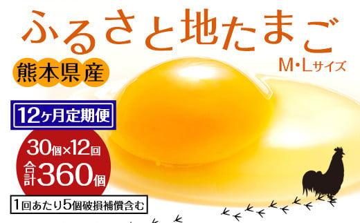 【定期便12回】ふるさと地たまご 360個(30個×12回)卵 赤たまご