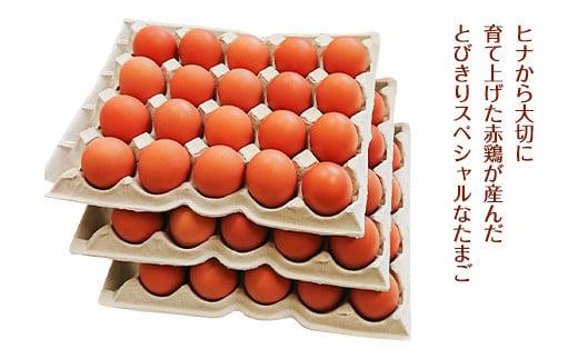 ふるさと地たまご 60個(M・Lサイズ)卵 赤たまご 10個破損補償含む
