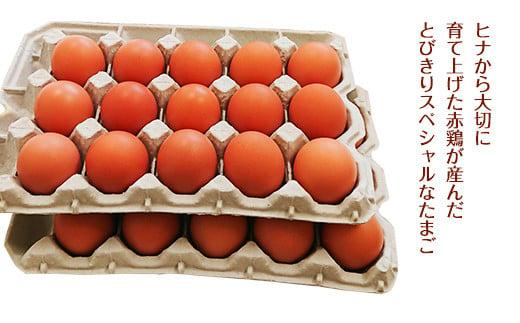 【定期便6回】ふるさと地たまご 180個(30個×6回)卵 赤たまご