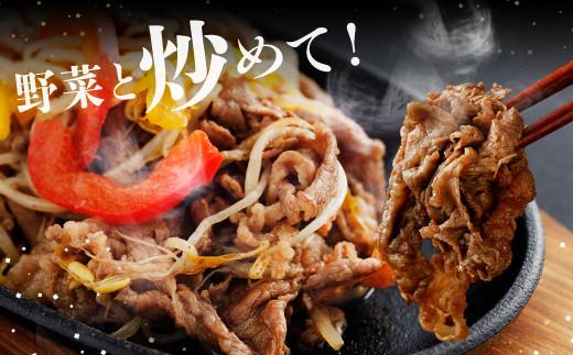 9月発送【A4 ~A5 ランク】九州産 黒毛和牛切り落とし1.1kg