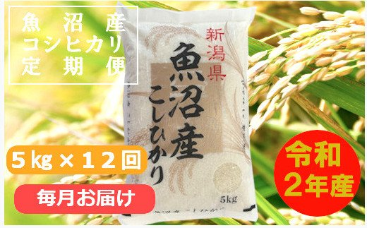 魚沼産コシヒカリ定期便 5kg×12回【毎月お届け】(小千谷米穀)