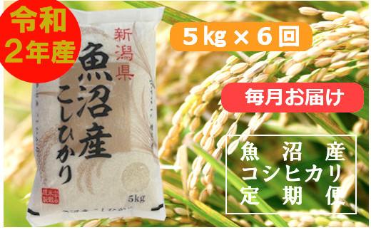 魚沼産コシヒカリ定期便 5kg×6回【毎月お届け】(小千谷米穀)