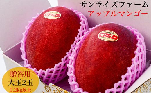 【2021年発送】サンライズファームのアップルマンゴー大玉2玉1.2kg以上贈答用
