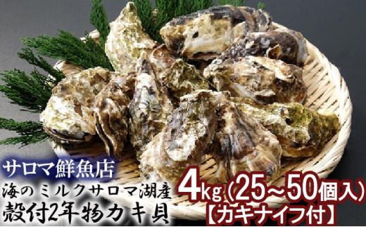 [№5742-0841]海のミルクサロマ湖産殻付2年物カキ貝 4kg (25~50個入)【カキナイフ付】